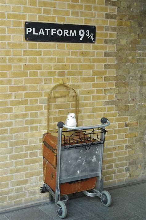 9 Real World Harry Potter Experiences You Must Not Miss