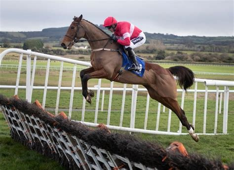 Laurina und Ruby Walsh, Quevega Mares Hurdle, Punchestown