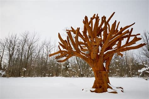 In the Shade of Trees #1 Ai Weiwei — The Tree Recomposed