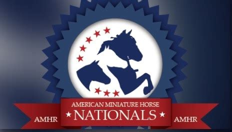 AMHR Nationals | LIVE – Total Horse Channel | Equestrian TV